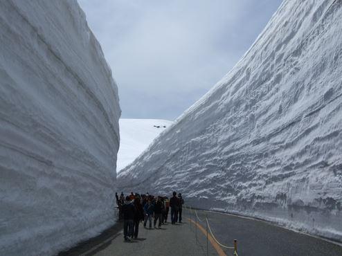 กำแพงหิมะ